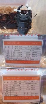 【第十三回目:ブリード始動】No.2.JPG